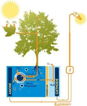 plant-mobiel-opladen